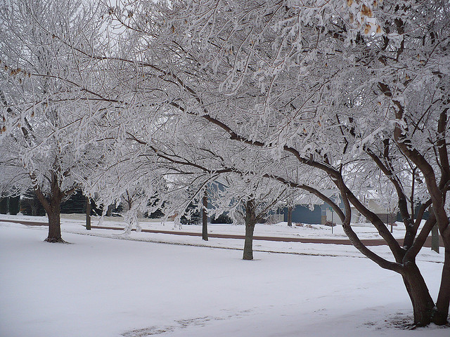 Winter Safety Tips for Cleaning Professionals