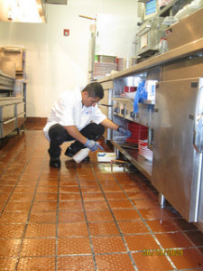 restaurant cleaning